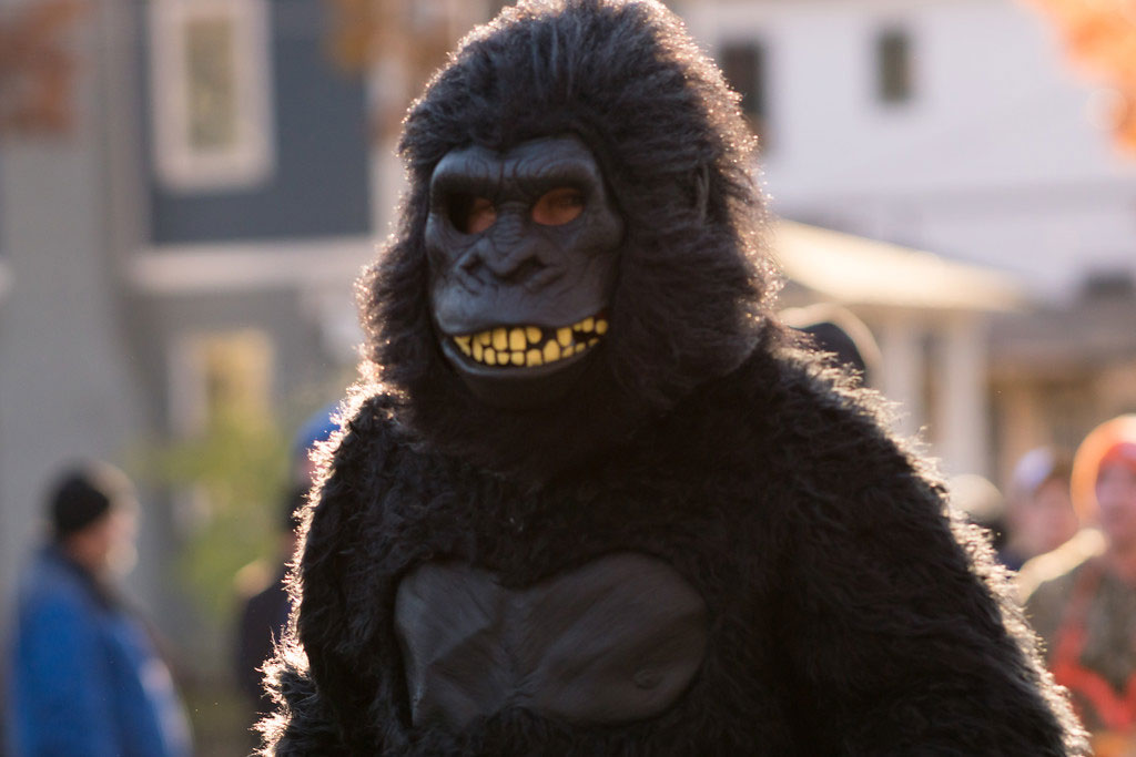 photo-of-arlington-va-turkey-trot-gorilla-costume